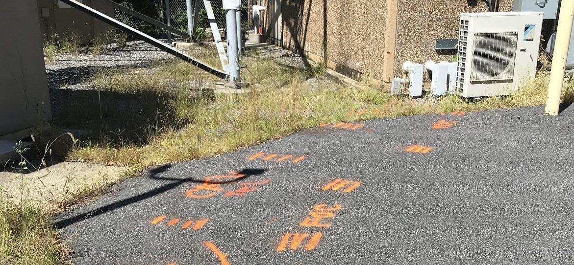 Orange paint on ground marking location of major communication line cooridor